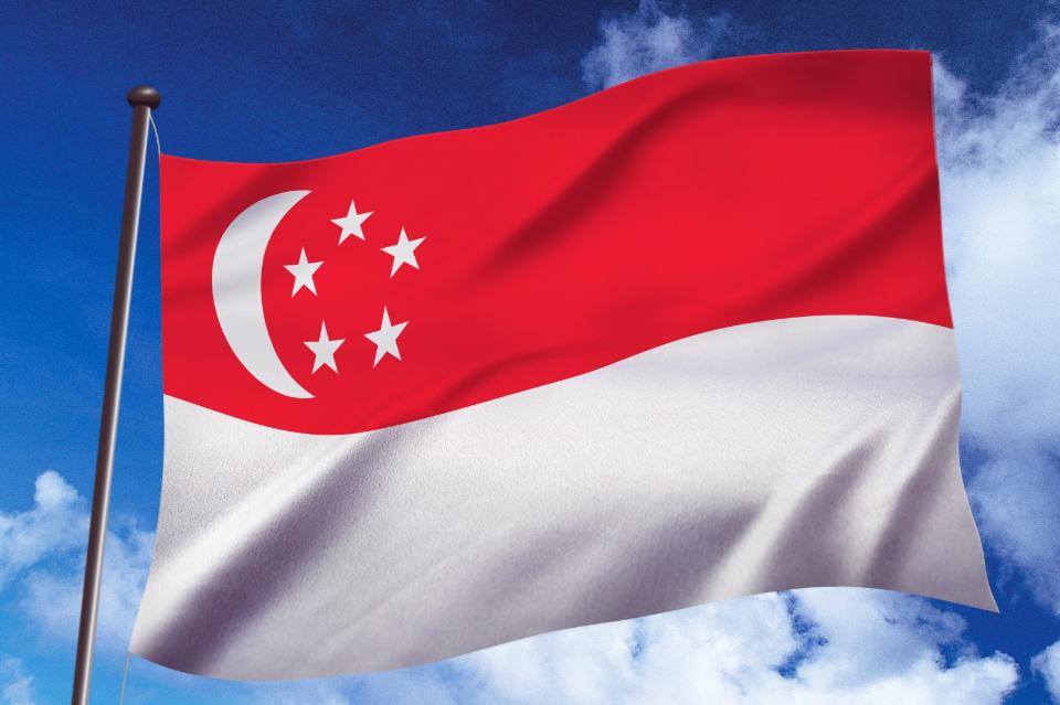 シンガポール株のおすすめ銘柄一覧!【魅力度が高い金融業・通信業に注目】